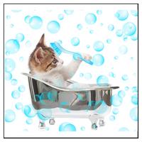 Loppschampo till katter