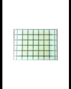 Limpapir med feromonet i limmet (7,7 x 5,8 cm)