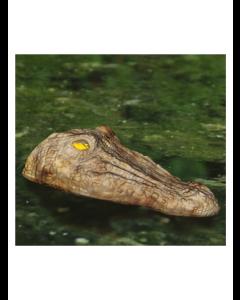 Flytande krokodilhuvud till damm och sjö