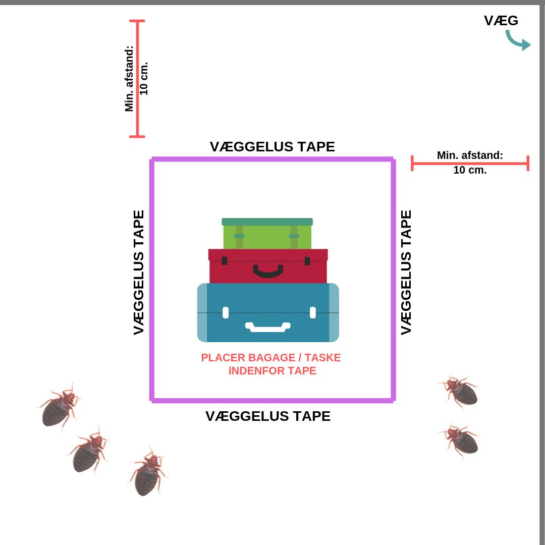 Illustration av upprättande av bedbug-tejp för karantän av bagage