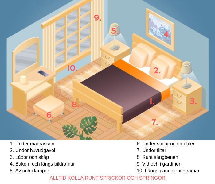 Här bor vägglöss i sovrummet.