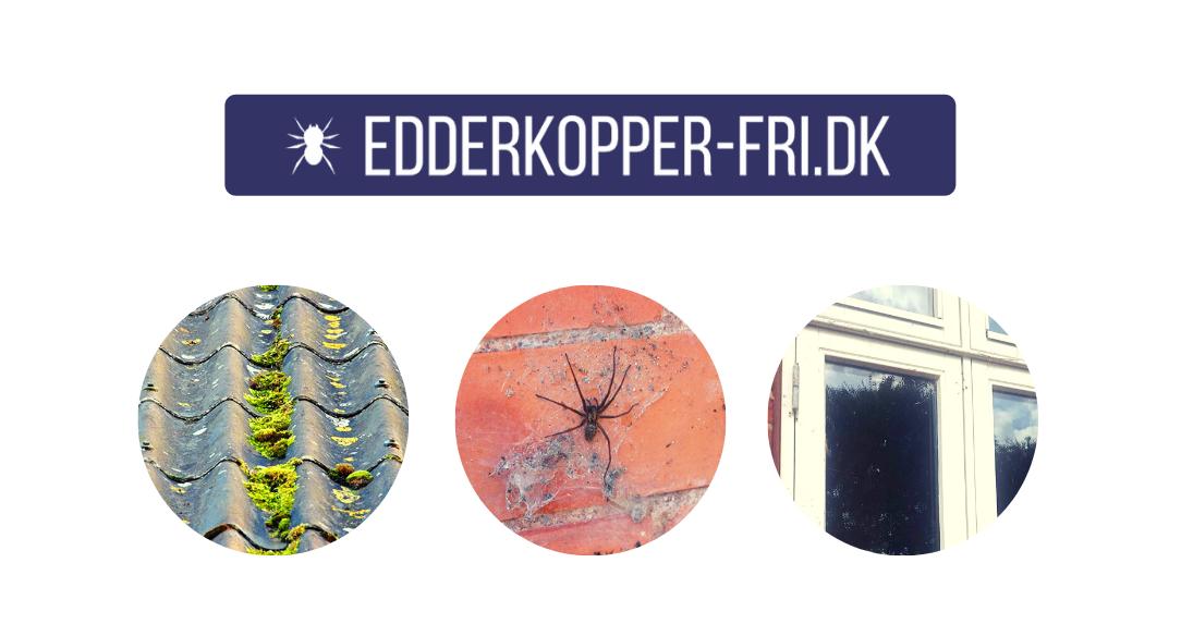 Edderkopper-Fri Banner